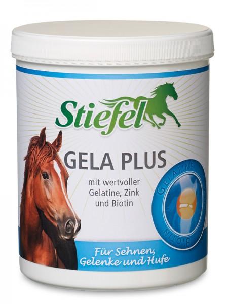 Gela Plus