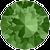 291-feen-green