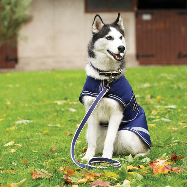 Amigo Dog Lead Horseware