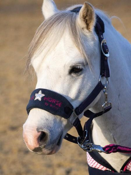 Busse Halfter-Set Star Horse