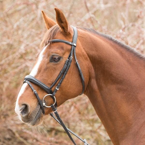 Trensenzaum Valletta Horse & Passion