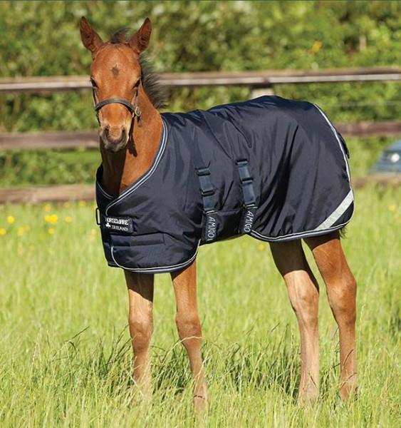 AMIGO Foal Rug Fohlendecke