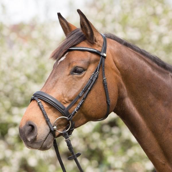 Trensenzaum Lissabon Horse & Passion