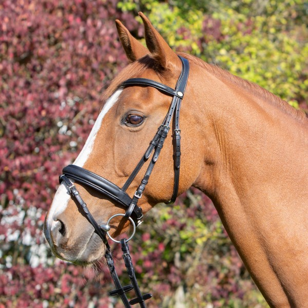 Trensenzaum Super Soft Horse & Passion
