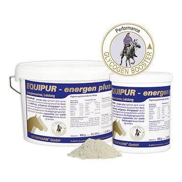 EQUIPUR - energen plus für den Energiespeicher