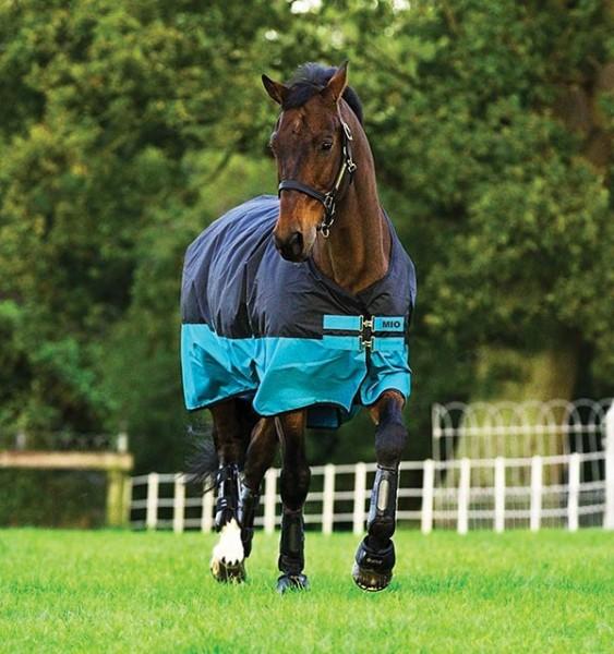 Mio Turnout Horseware